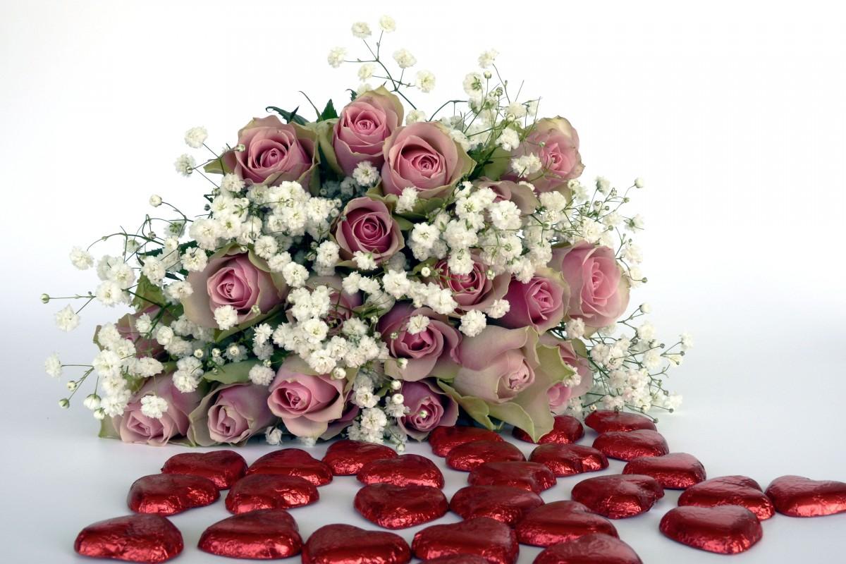 Images Gratuites La Nature Blanc Fleur Petale Amour Cœur