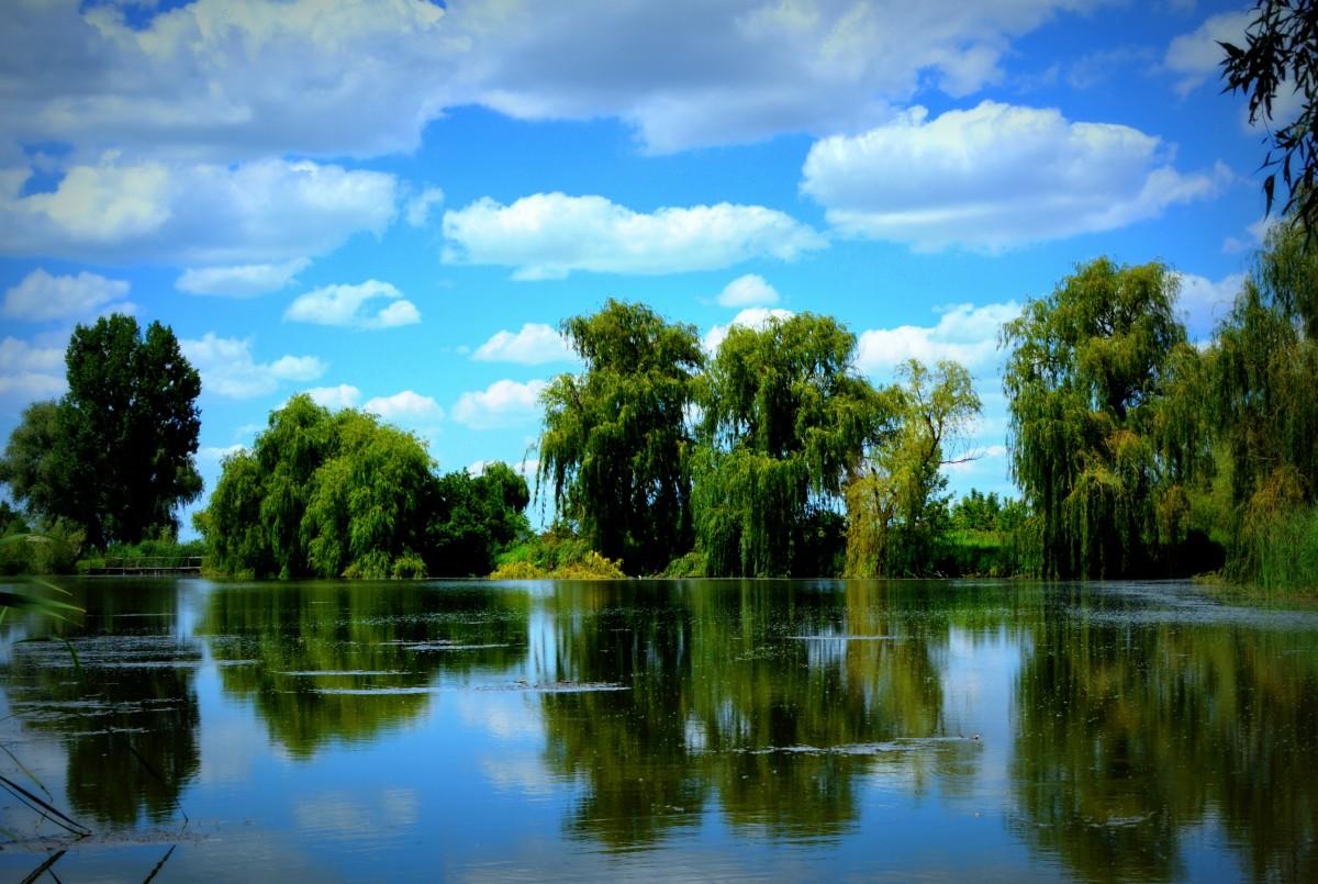 Надписью люблю, открытки природы с отображением у воде