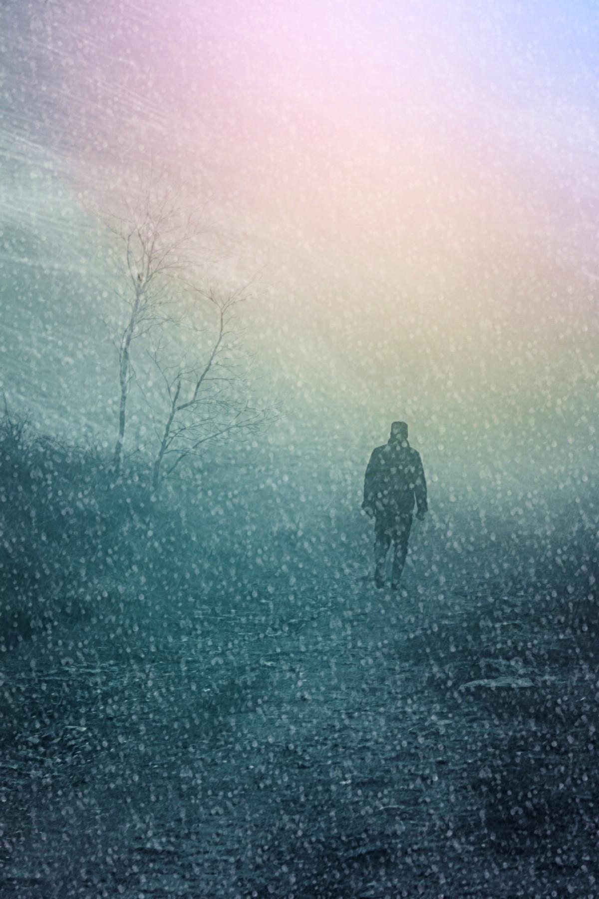картинки в сказке обман призрачный остров скрылся в туман популярных домашних