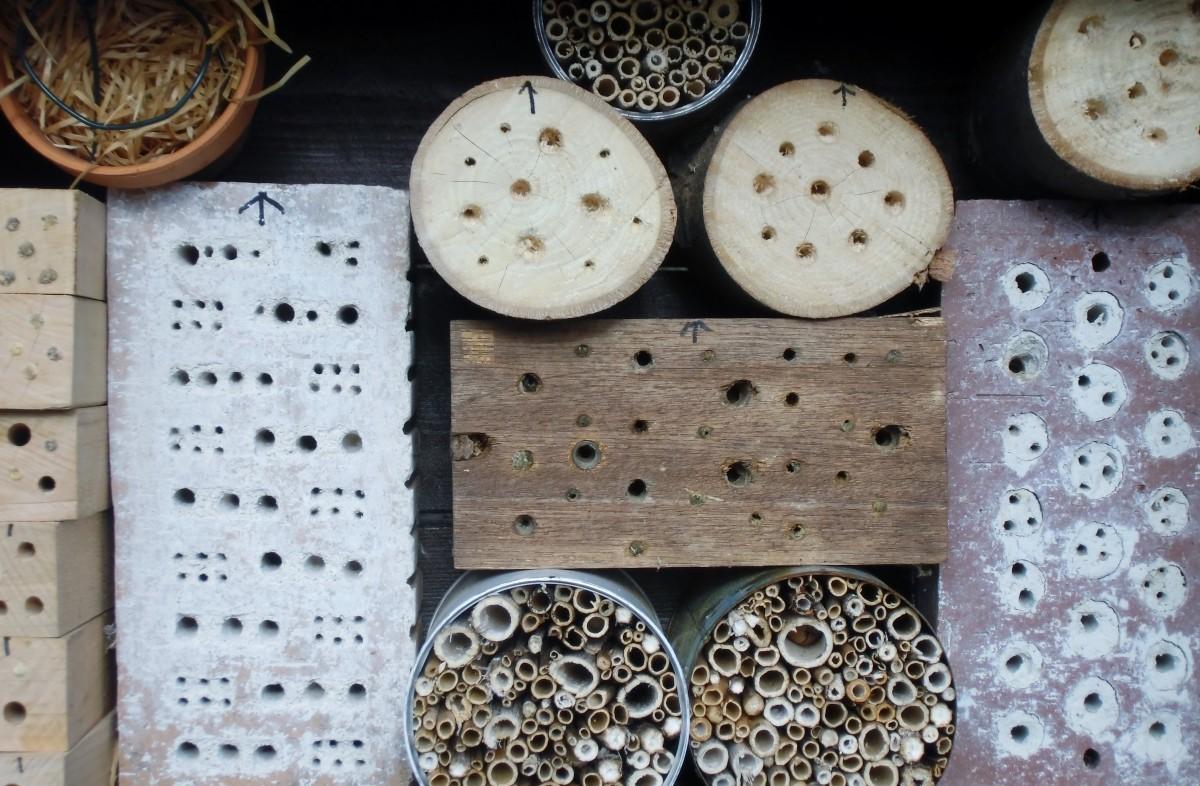 Images gratuites bois mod le aliments produire - Boite a insecte ...