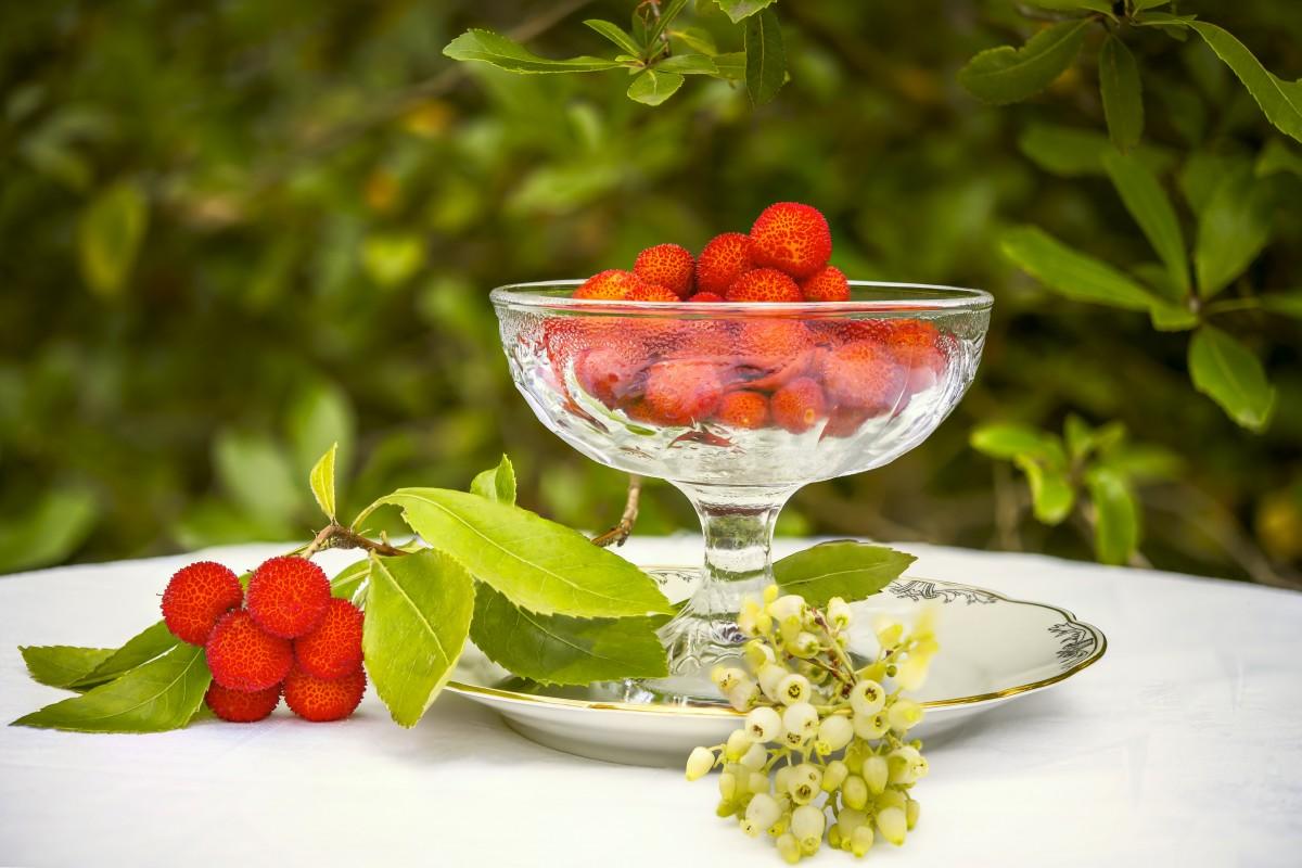images gratuites fruit fleur p tale aliments rouge produire feuilles persistantes. Black Bedroom Furniture Sets. Home Design Ideas
