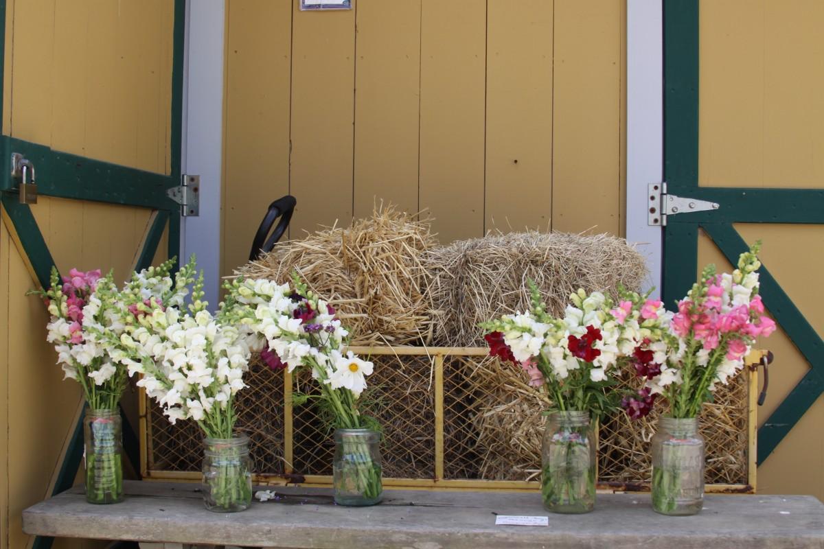 Fotos gratis planta flor ventana casa balc n dise o - Adornos florales para casa ...