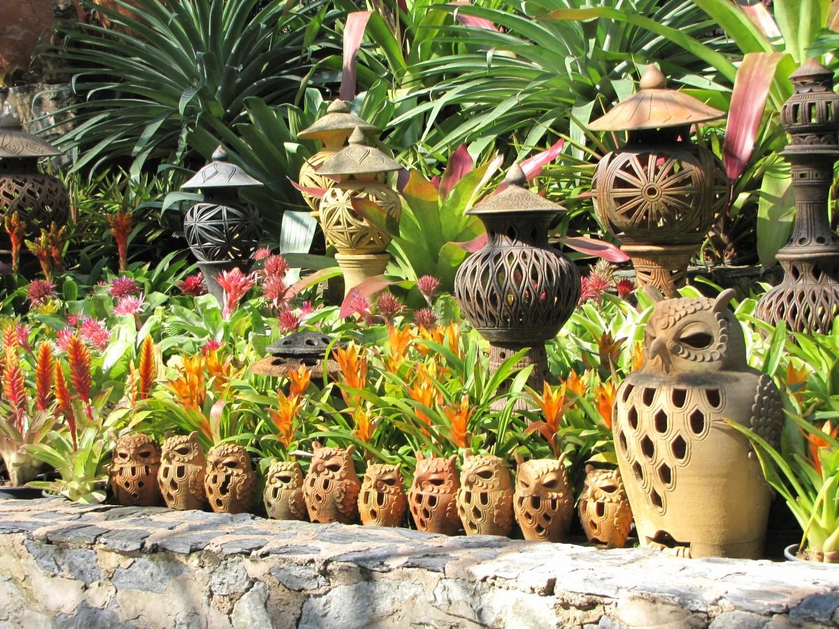 Gratis billeder tr natur blomst jungle botanik for Plante jungle