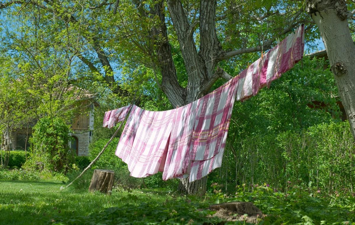 Fotos gratis granja patio interior limpiar lavar for Tendedero jardin