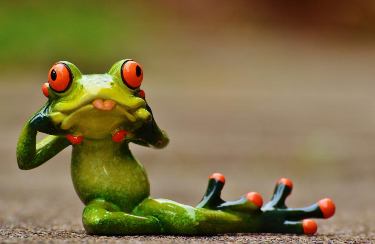 Свадьбу, прикольные картинки про жаб