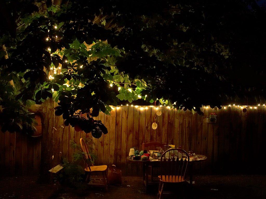 Free Images : table, tree, light, night, sunlight, morning, leaf ...