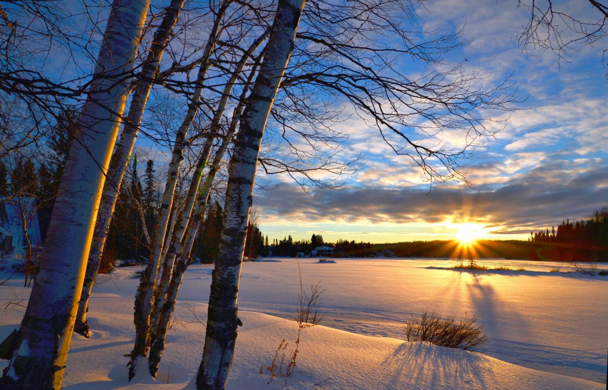 paysage arbre la nature branche neige du froid hiver nuage ciel Soleil lever du soleil le coucher du soleil lumière du soleil Matin Lac Aube crépuscule la glace soir crépuscule réflexion bouleau Météo saison Paysage d'hiver des arbres des nuages couleurs Canada Québec Contre jour Plante ligneuse