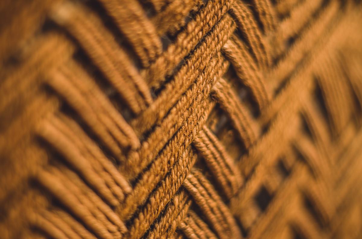 Images gratuites ros e corde bois aliments surgir for Point de rosee chaudiere bois
