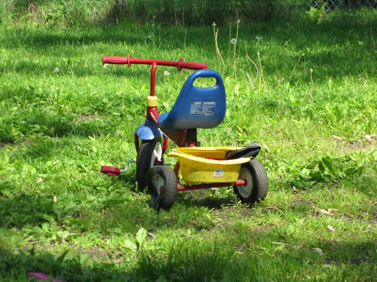 images gratuites herbe pelouse chariot jouer tricycle outil v hicule sol enfant jouet. Black Bedroom Furniture Sets. Home Design Ideas