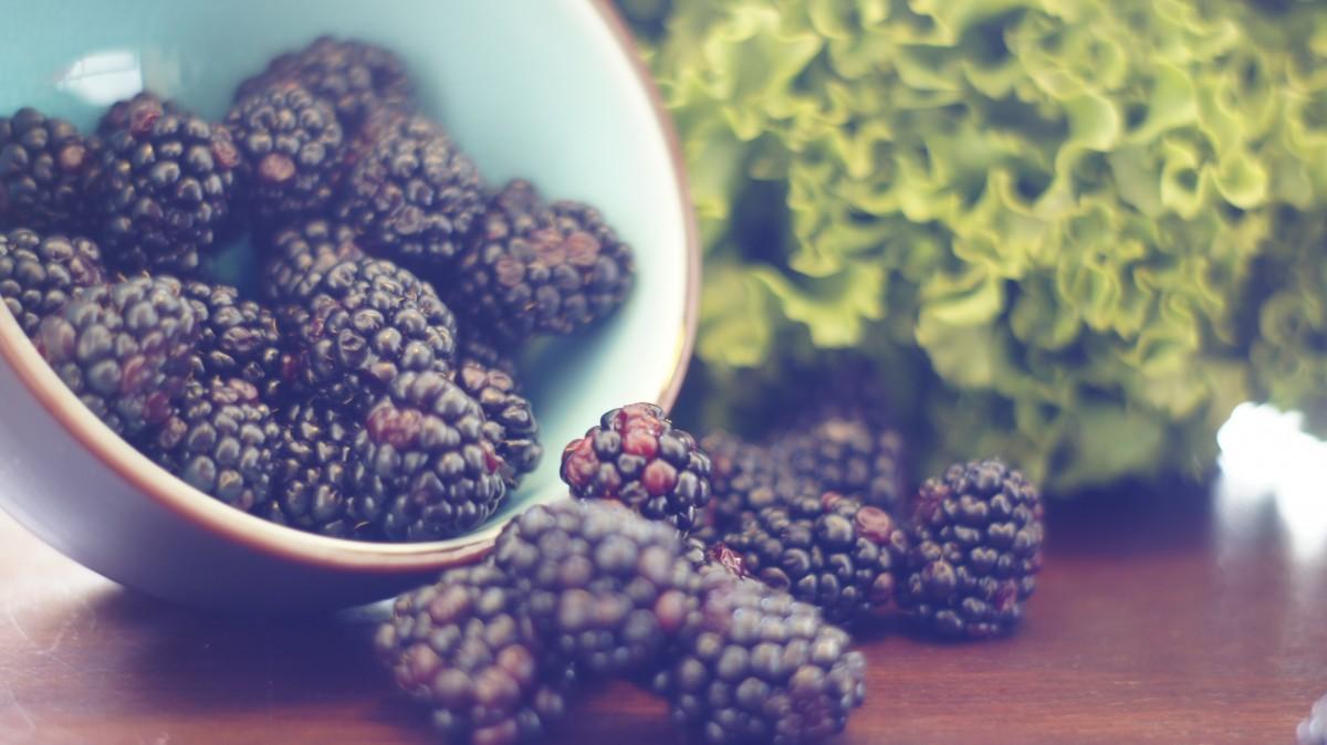 plant fruit berry flower pollen bowl food produce color fresh blue blackberries macro photography flowering plant