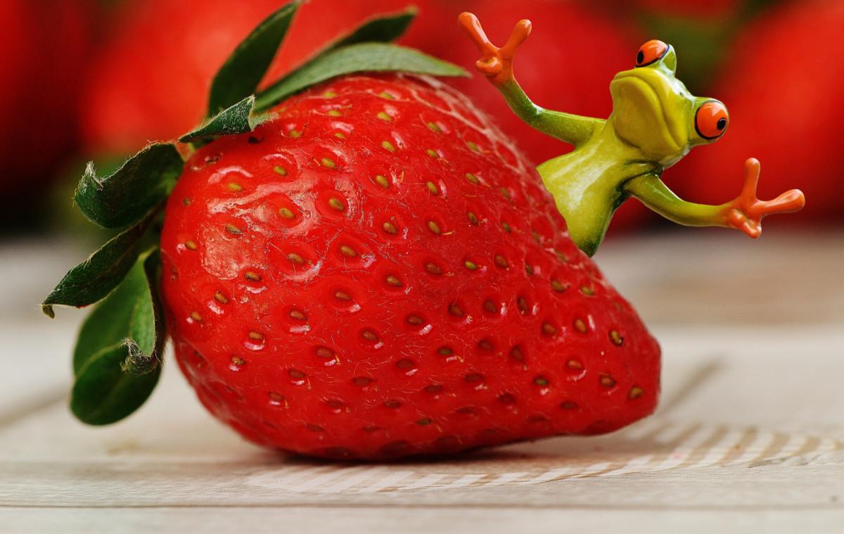 веселые картинки фруктов и ягод вас есть