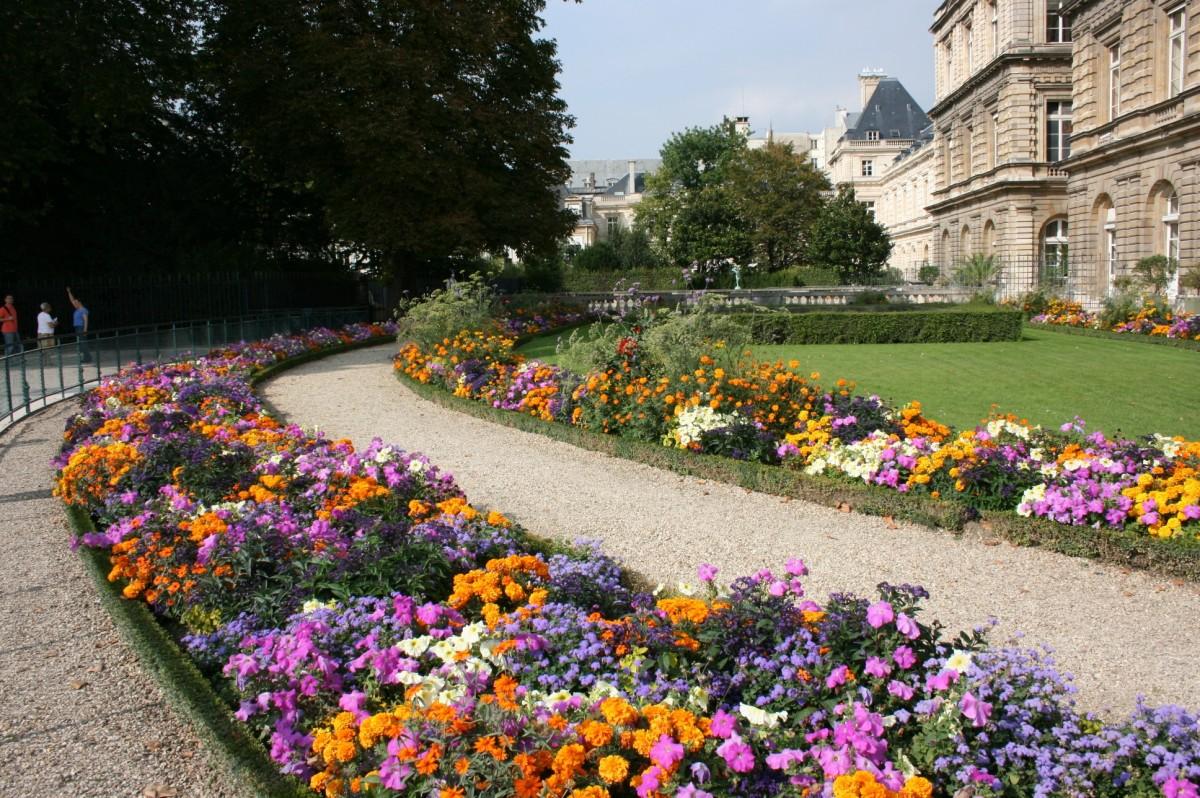 Images gratuites pelouse fleur paris parc flore for Jardin botanique paris
