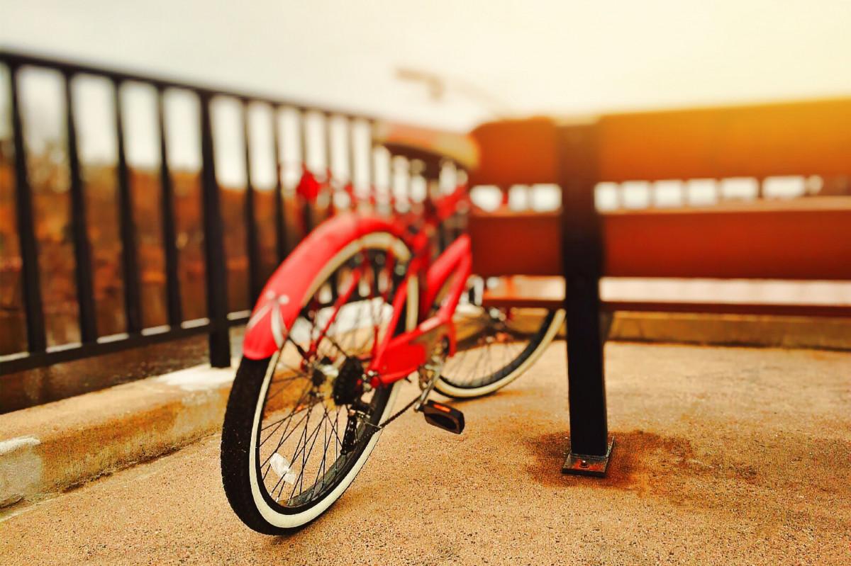 Kostenlose foto : Sport, Rad, Fahrrad, rot, Fahrzeug, Farbe, Zyklus ...