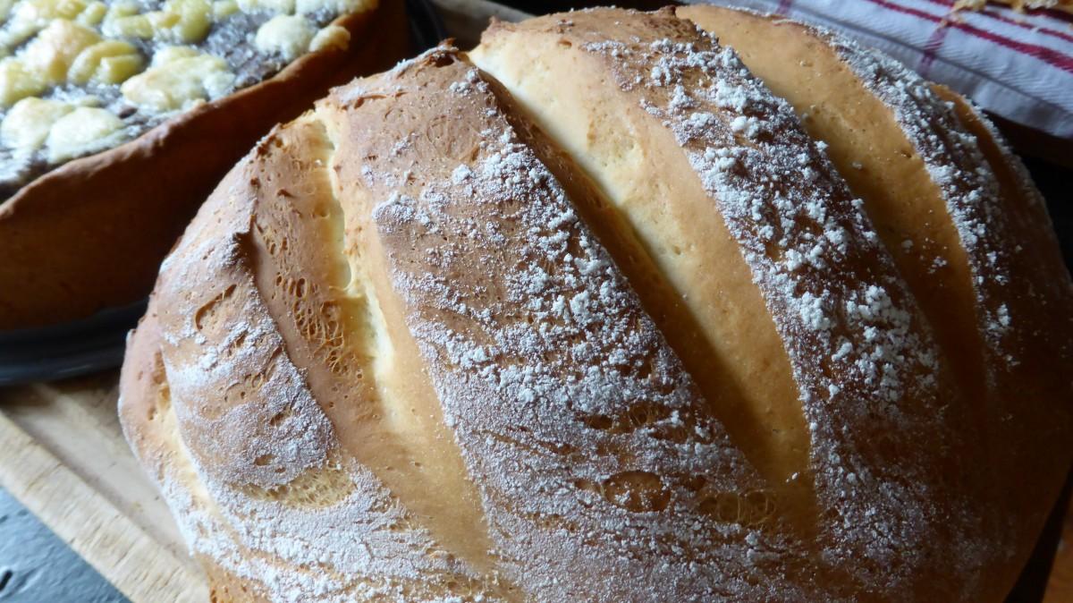 Images Gratuites : aliments, cuisine, cuisson, pâte..