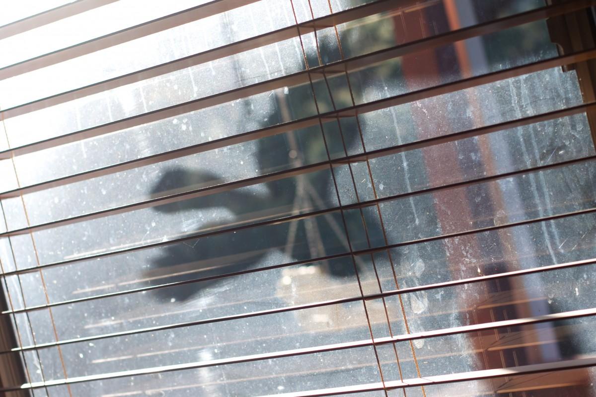 Images gratuites bois sol toit b timent mur ligne for Fenetre bois metal suisse
