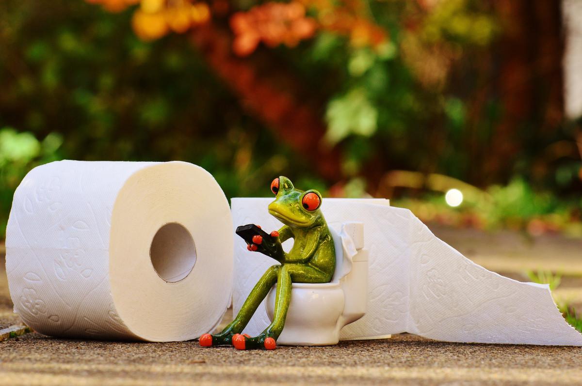 Открытки, смешные фото с туалетной бумагой