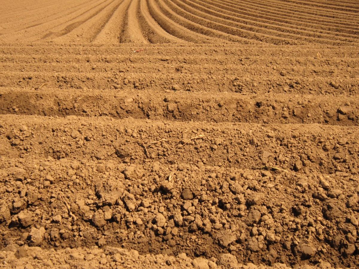 peyzaj doğa kum alan zemin çayır çöl Bahar kahverengi toprak tarım sade Karmakarışık Alanlar toprak Plato kuraklık bozkır tarıma elverişli doğal çevre Ot ailesi Jeolojik olay