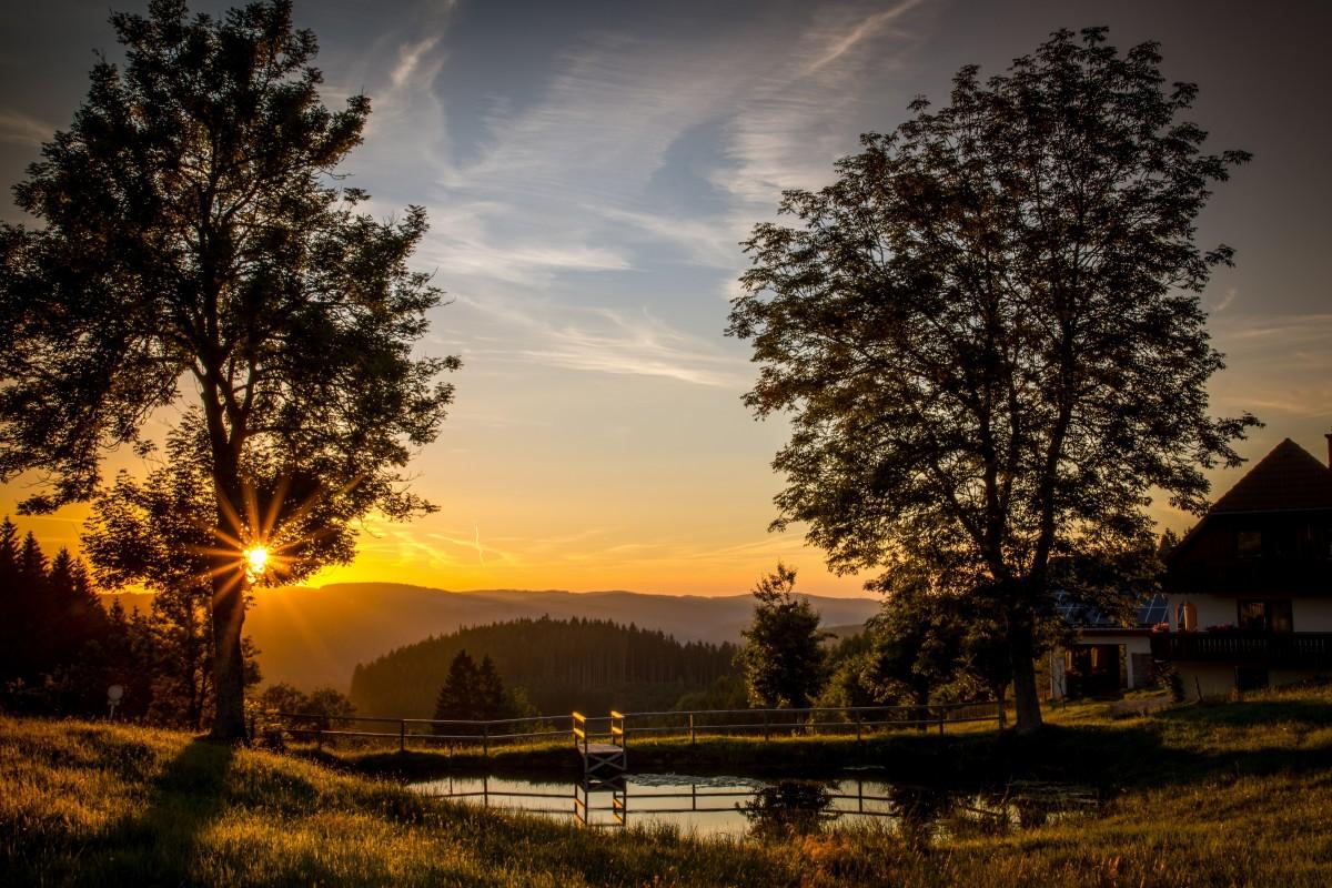 Gambar : pemandangan, pohon, air, alam, awan, menanam ...