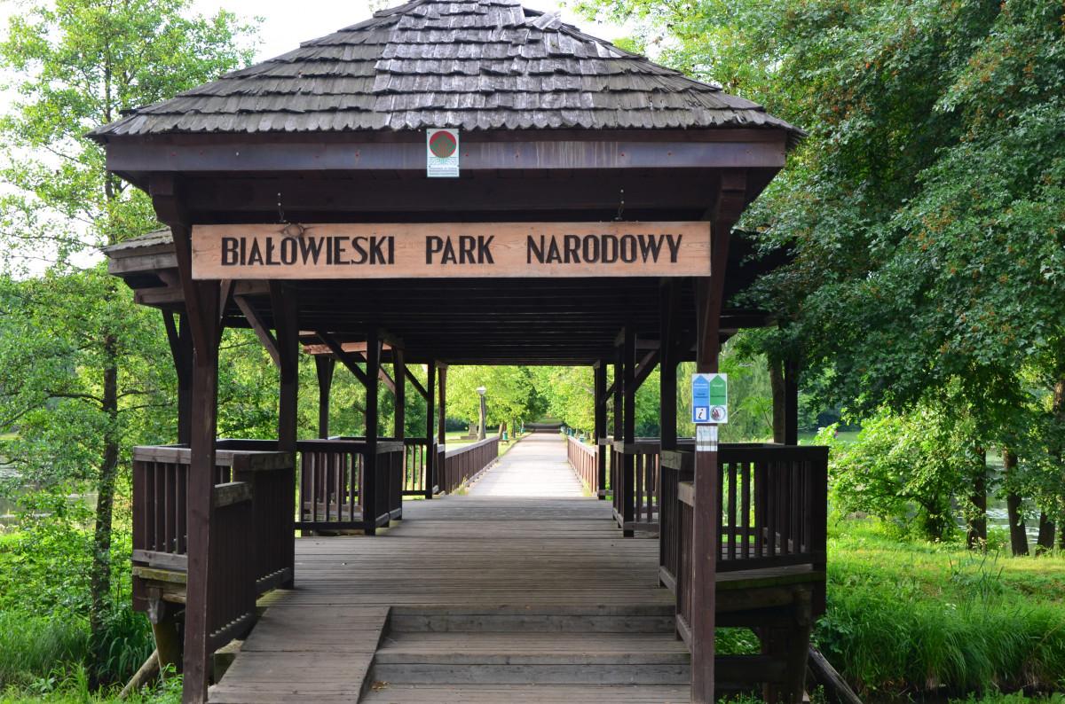 入口、公園、寺院、パビリオン、神社、鳥居、国立公園、ビアオウイーア、神社、屋外構造物