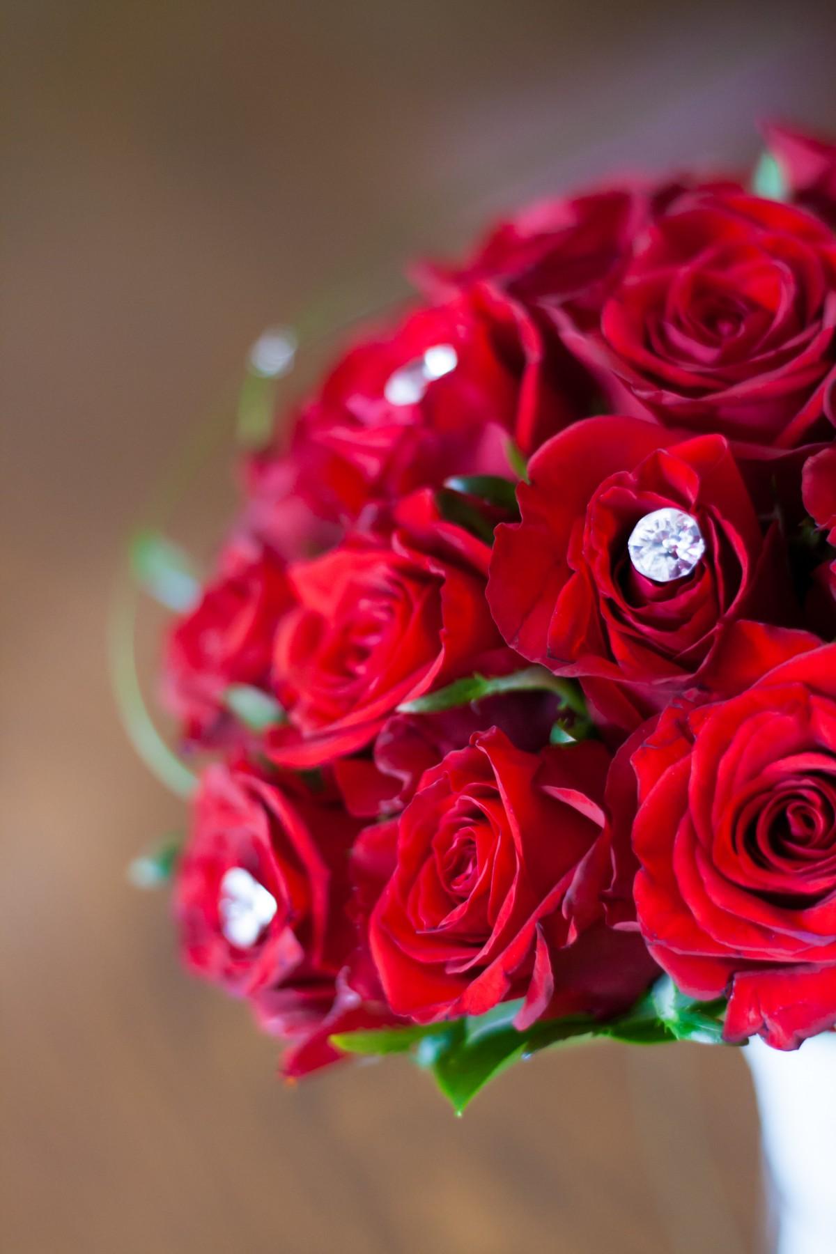 Images gratuites fleur p tale rouge rose mariage la - Image bouquet de roses gratuit ...