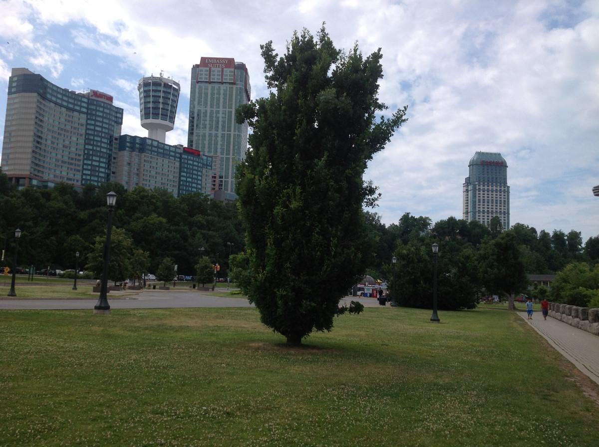 Elegant Free Images : Landscape, Tree, Architecture, Skyline, Lawn, City,  Skyscraper, Cityscape, Downtown, Construction, Plaza, Park, Corporate,  Landmark, Garden, ...