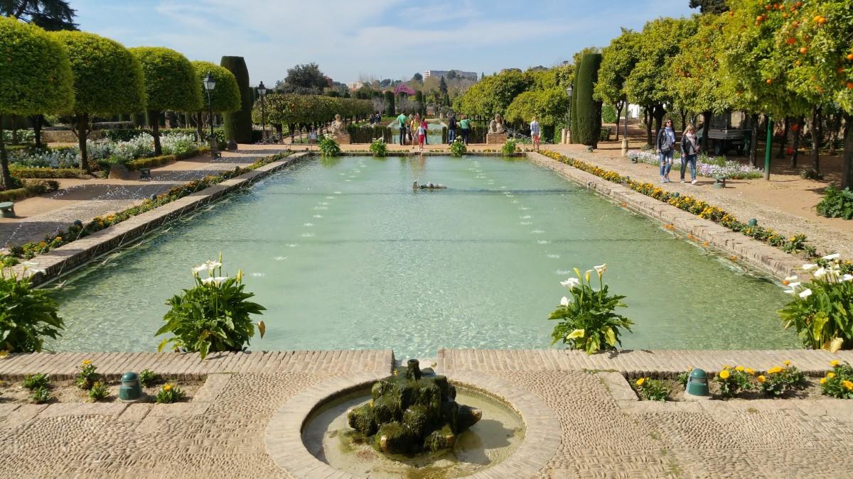 Fotos gratis paisaje rbol c sped flor pasarela for Piscinas jardin cordoba
