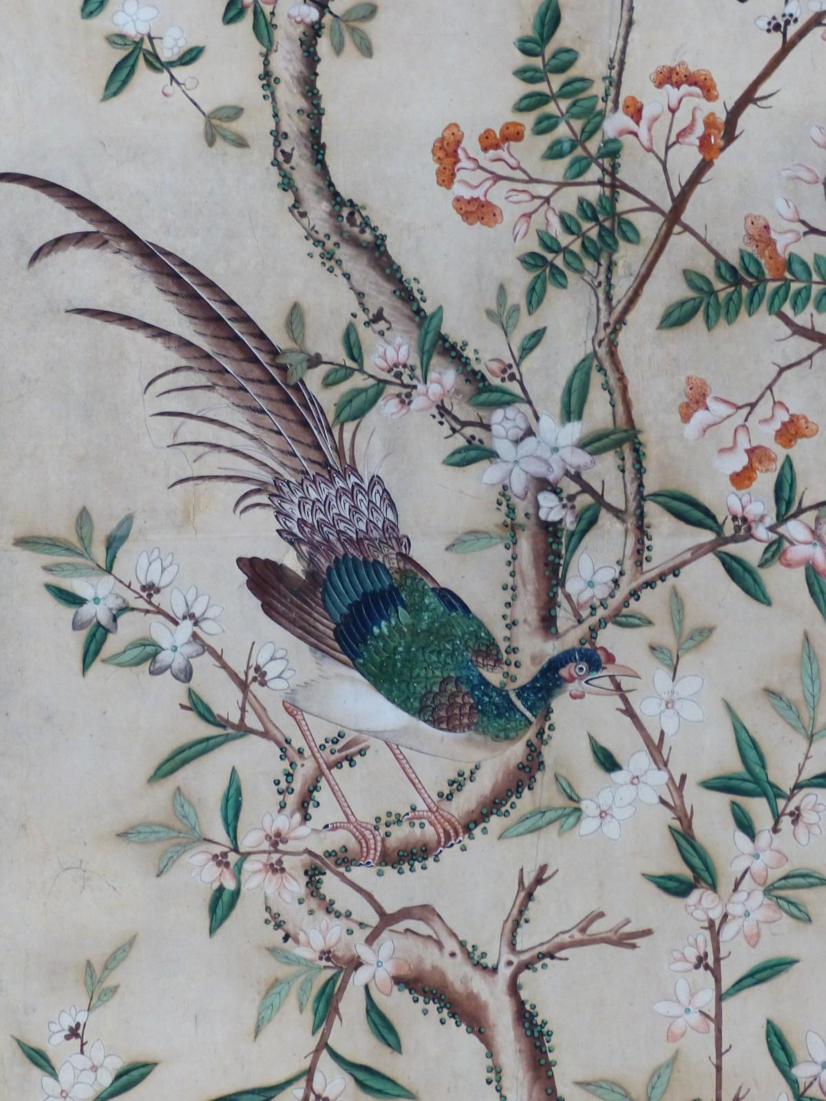 branch bird flower castle austria pheasant art sketch wallpaper salzburg hellbrunn schloss hellbrunn chinese wallpaper