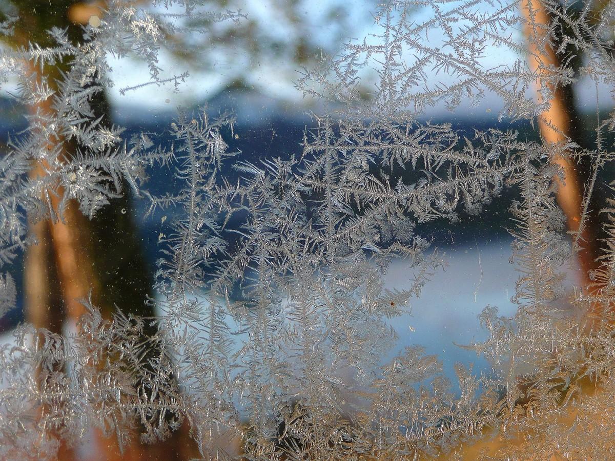 Фото картинки зимние на окнах