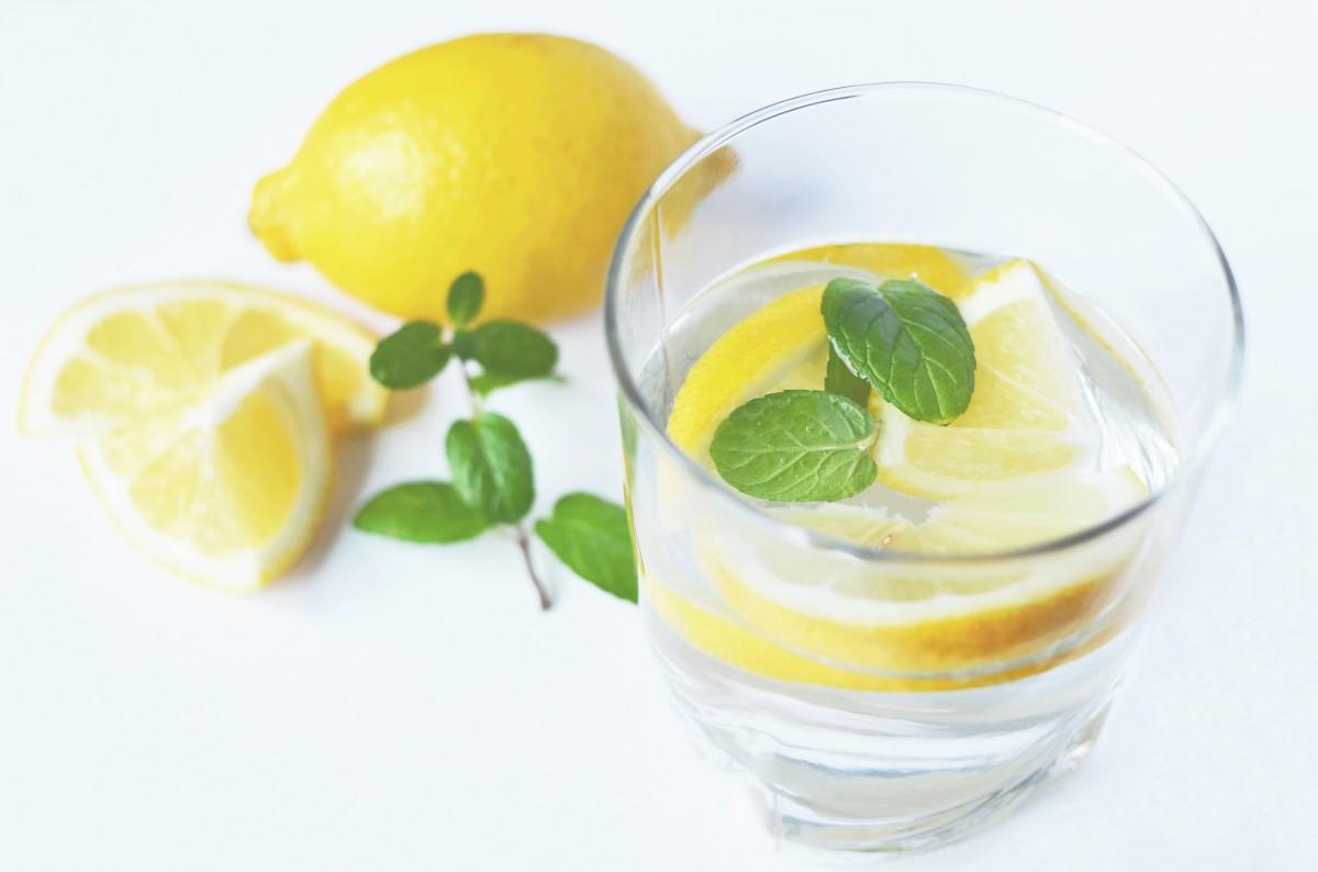 water plant fruit orange food produce fresh lemonade beverage drink lemon cocktail lime juice liqueur peppermint citrus lemons flowering plant land plant key lime lemon lime limeade lemon juice