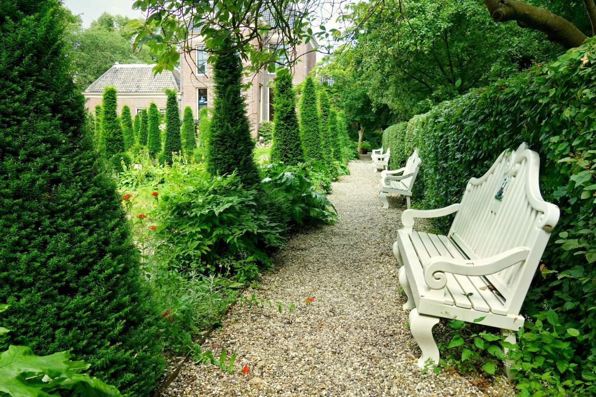 Free images tree grass wood lawn flower seat old - Decorar jardin con poco dinero ...
