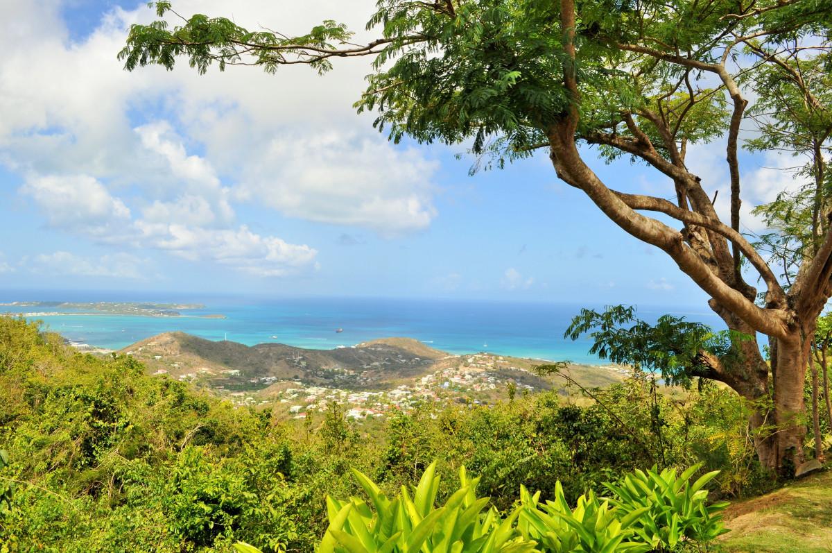 paysage mer arbre la nature forêt océan Prairie panorama été Voyage vert jungle paradis tropical vacances île savane tropique végétation forêt tropicale Caraïbes habitat Saint Martin Écosystème environnement naturel caractéristique géographique