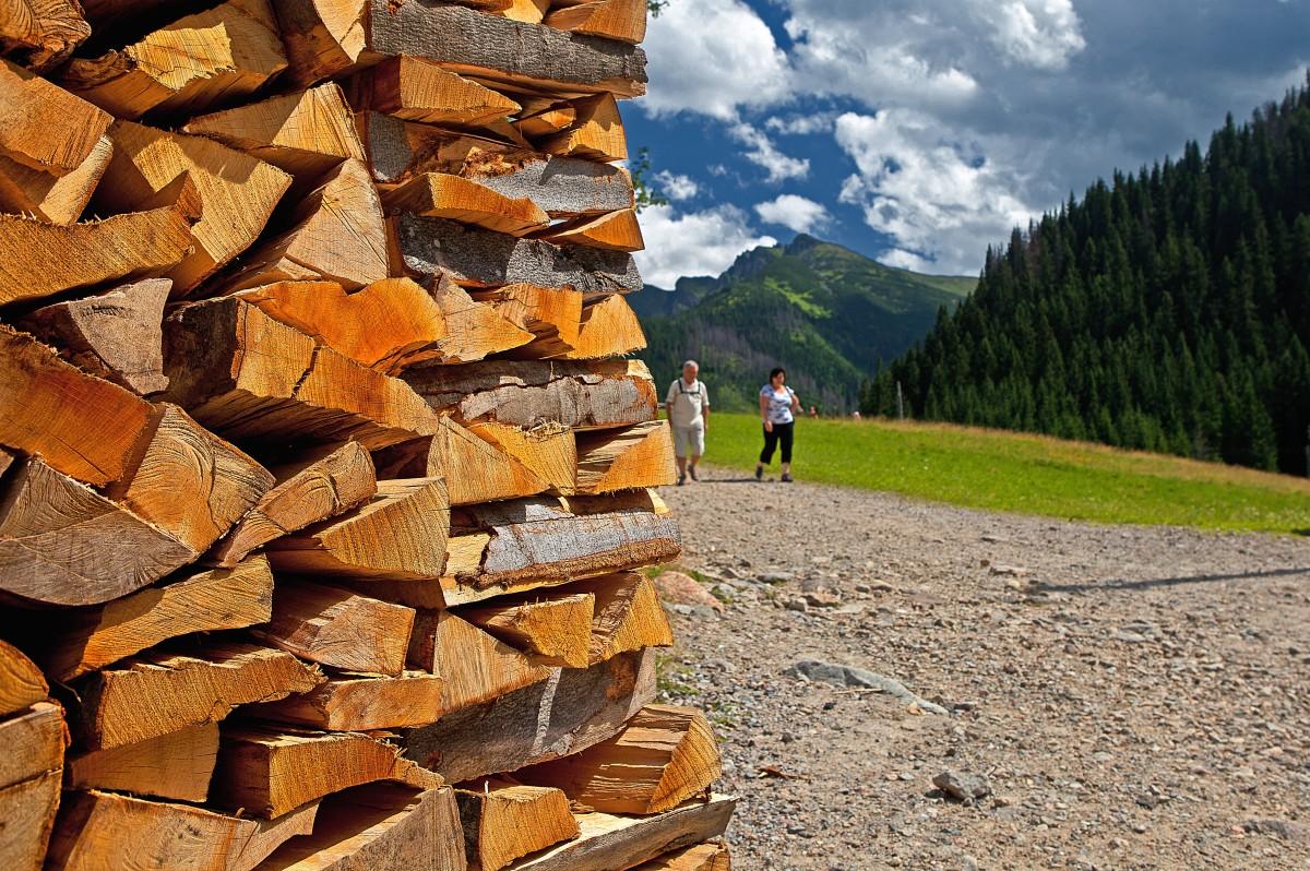 Images gratuites la nature mur cabanon chemin e bois de chauffage empiler bois d 39 oeuvre - Arbre fruitier comme bois de chauffage ...
