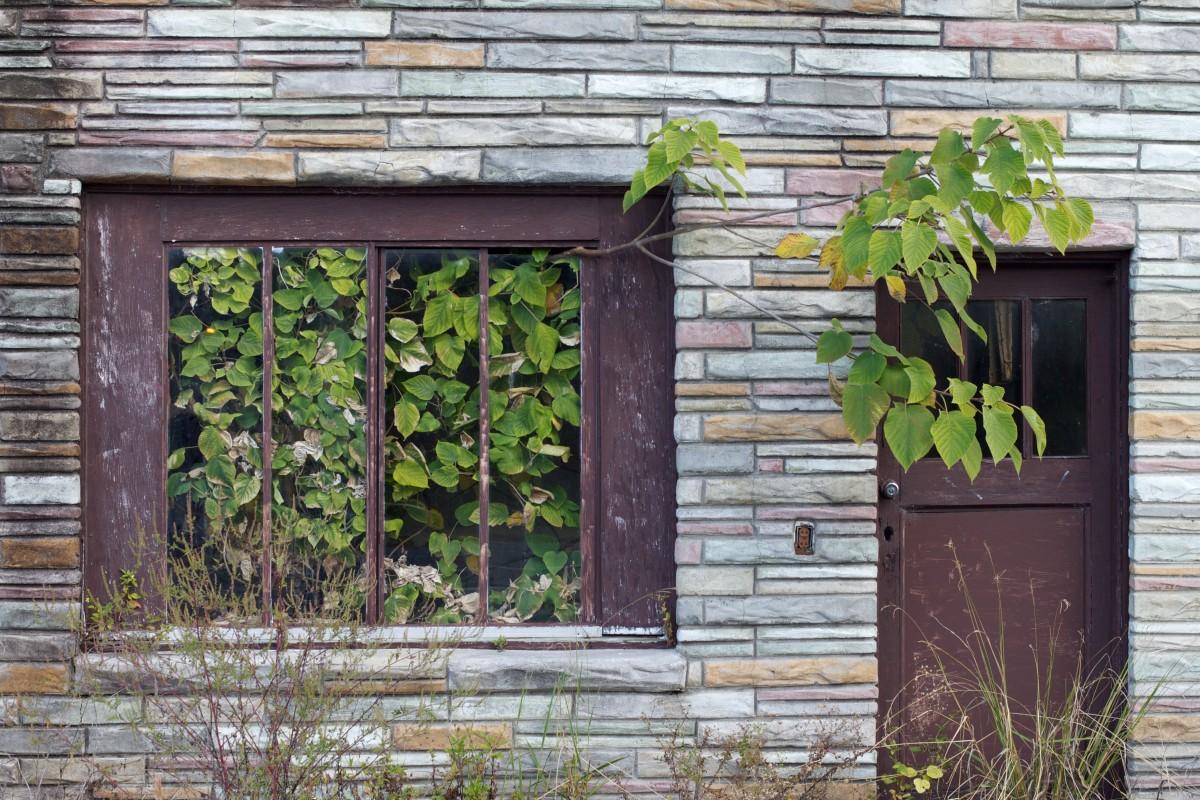 Images Gratuites Bois Fleur Fen Tre Vieux Porche
