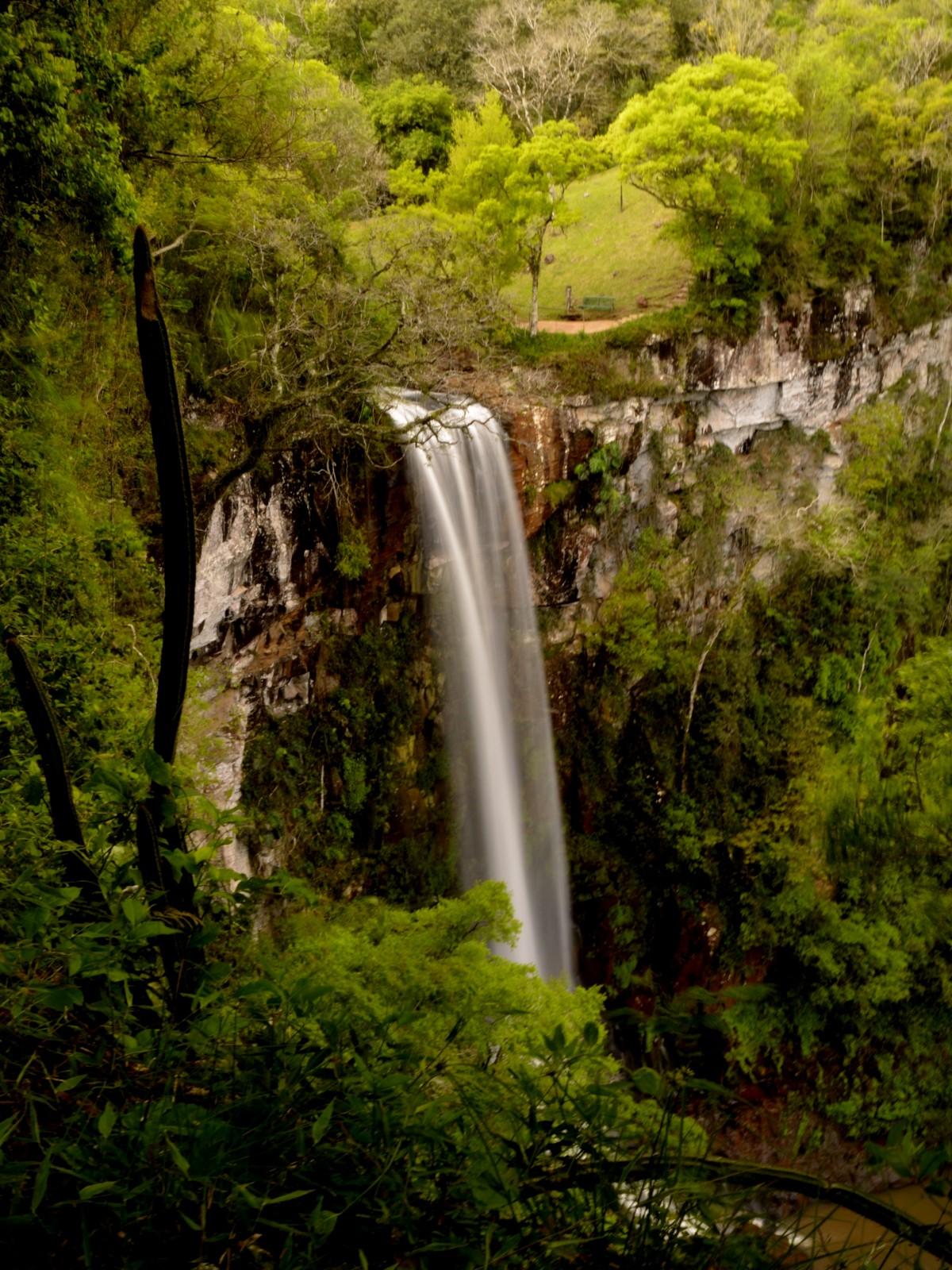 Immagini belle albero cascata natura selvaggia foglia for Cascada par