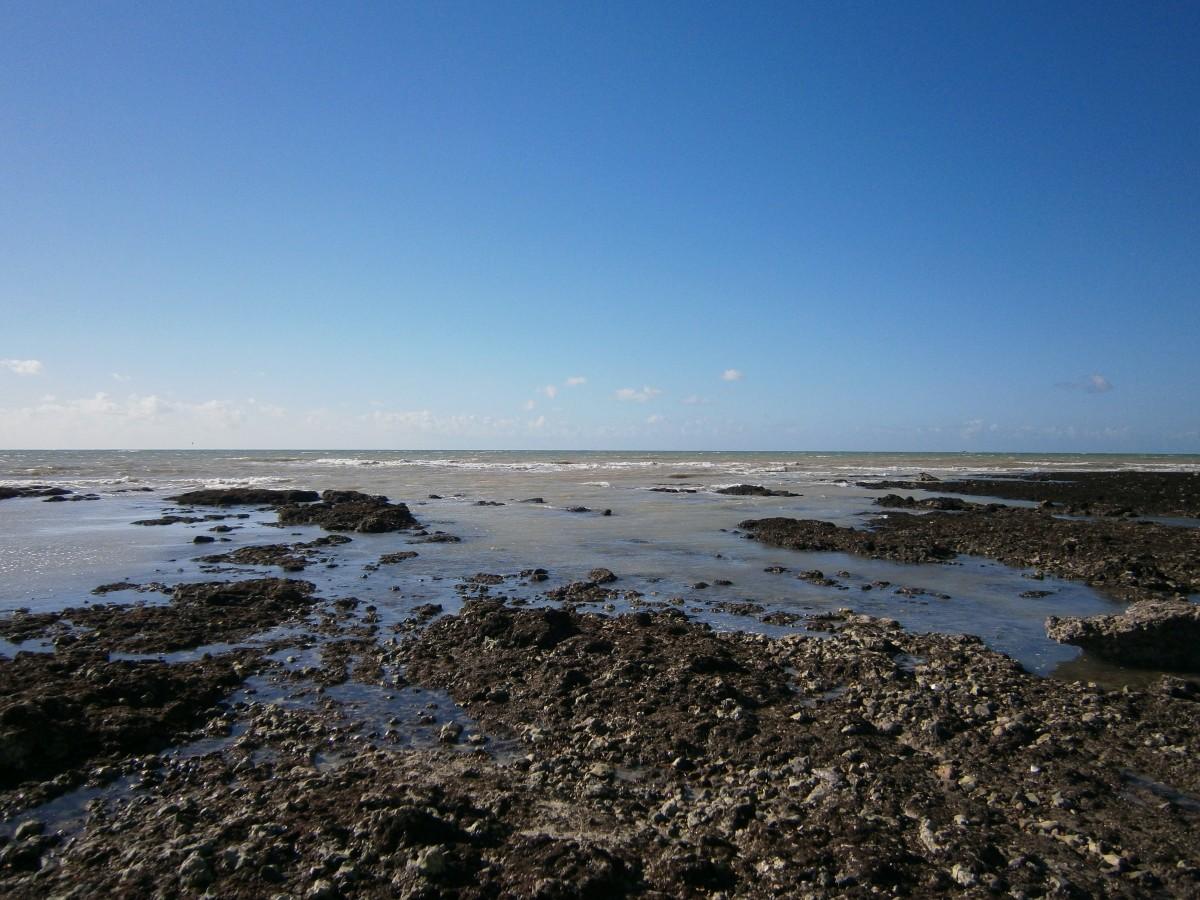 Free Images  Beach, Sea, Coast, Nature, Sand, Ocean -3068
