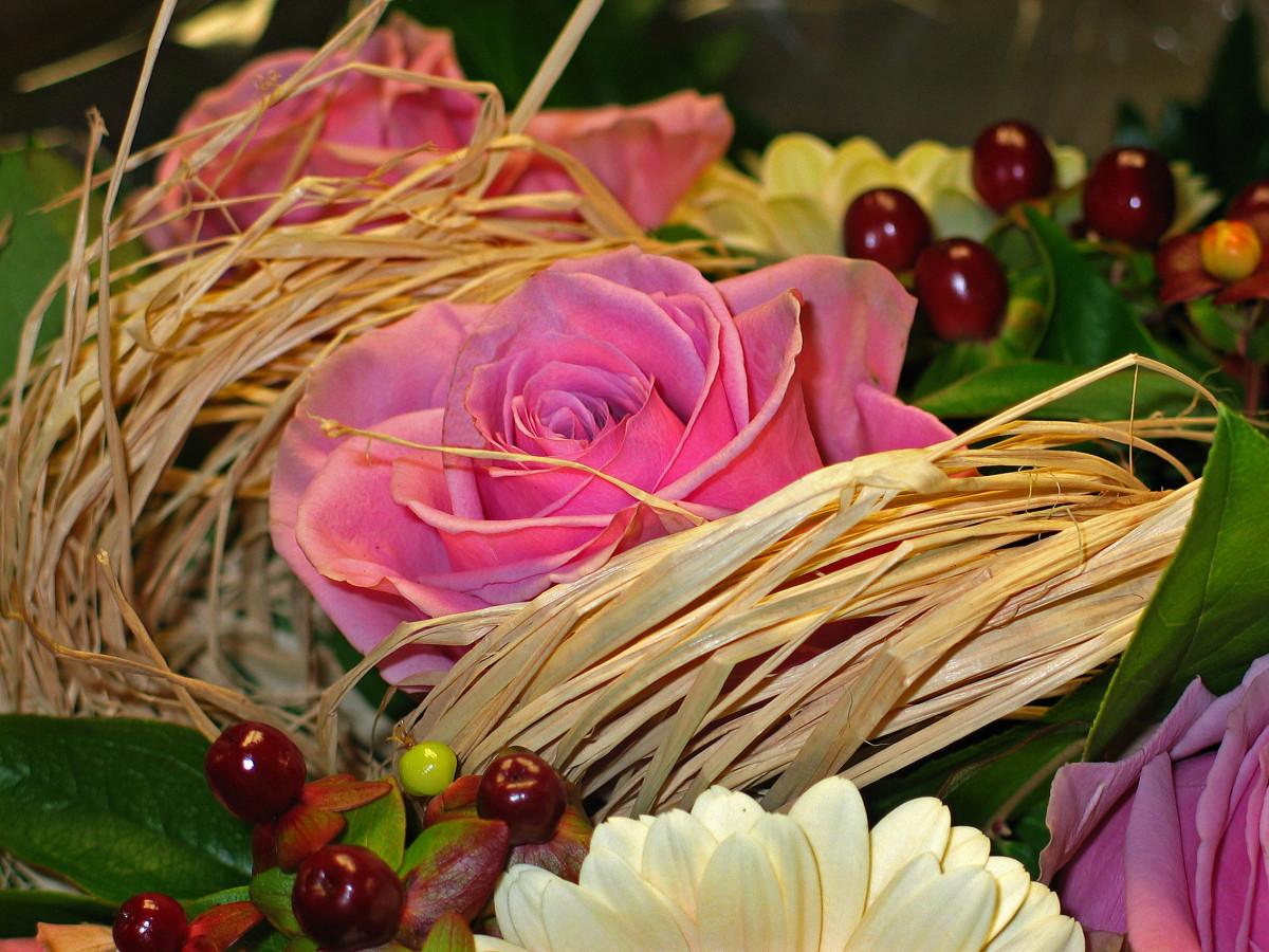 Images Gratuites Fleur Petale Amour Cadeau Vase Decoration Romance Romantique Rose Flore Je Vous Remercie Bon Anniversaire Des Roses Festival Image Sympa Contexte Carte Postale Joie Bienvenue Beau Je La Chance
