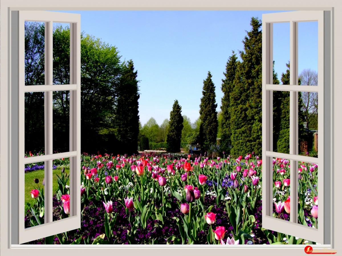 весна в окне картинки высокого разрешения
