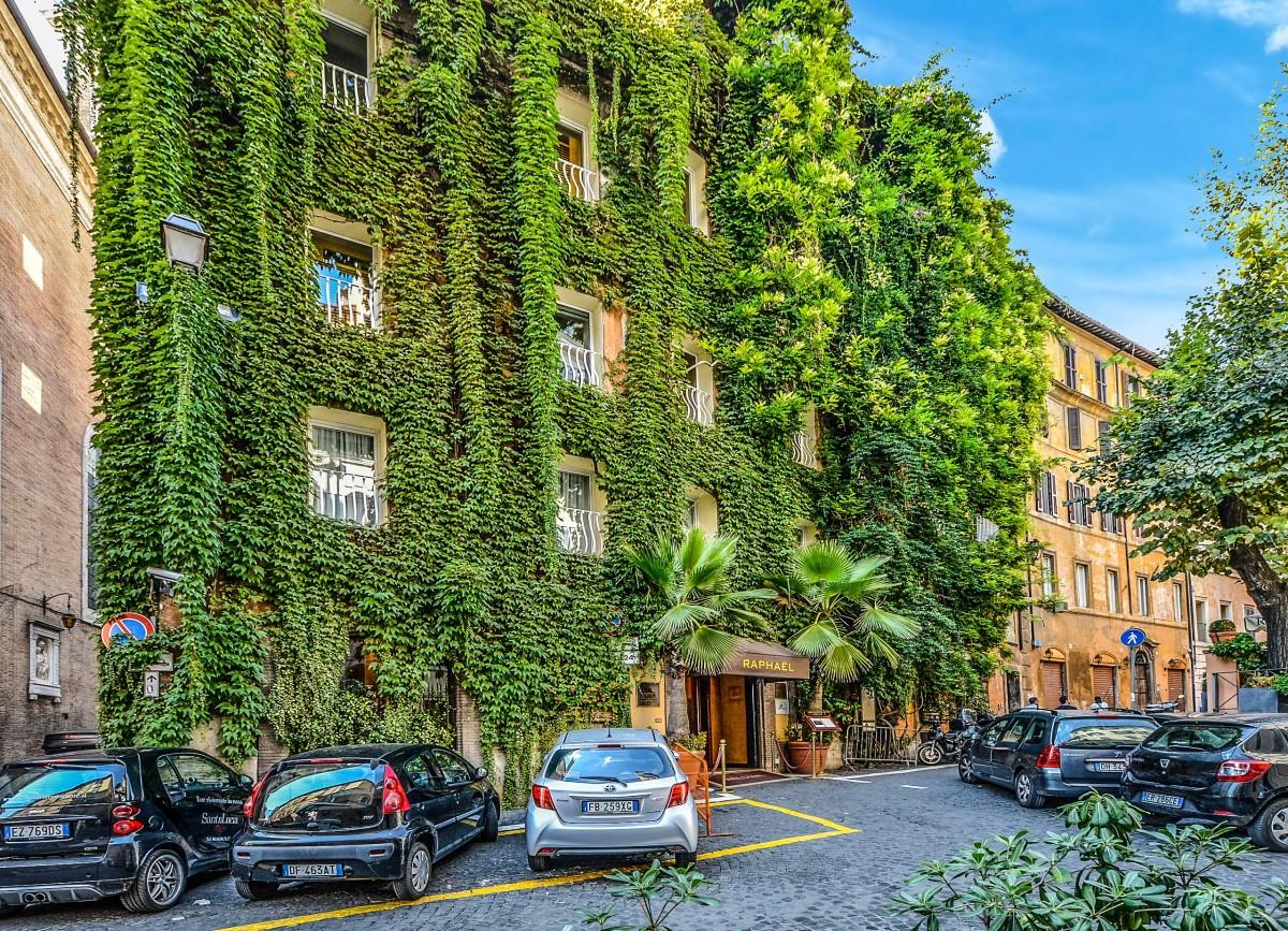images gratuites arbre la nature chemin lumi re ciel route rue maison fen tre ville. Black Bedroom Furniture Sets. Home Design Ideas