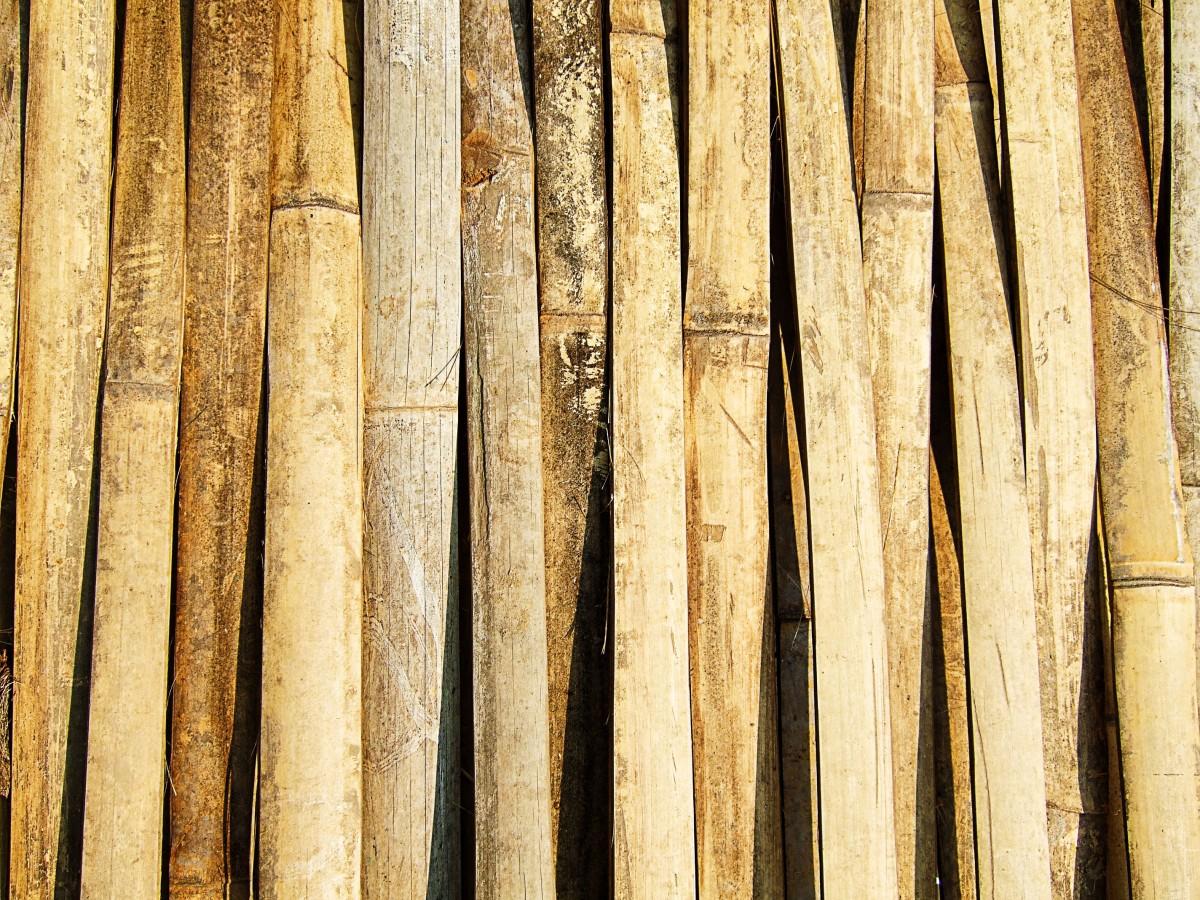 Images gratuites branche texture planche tronc mur ligne marron bois d 39 oeuvre - Branche de bois ...