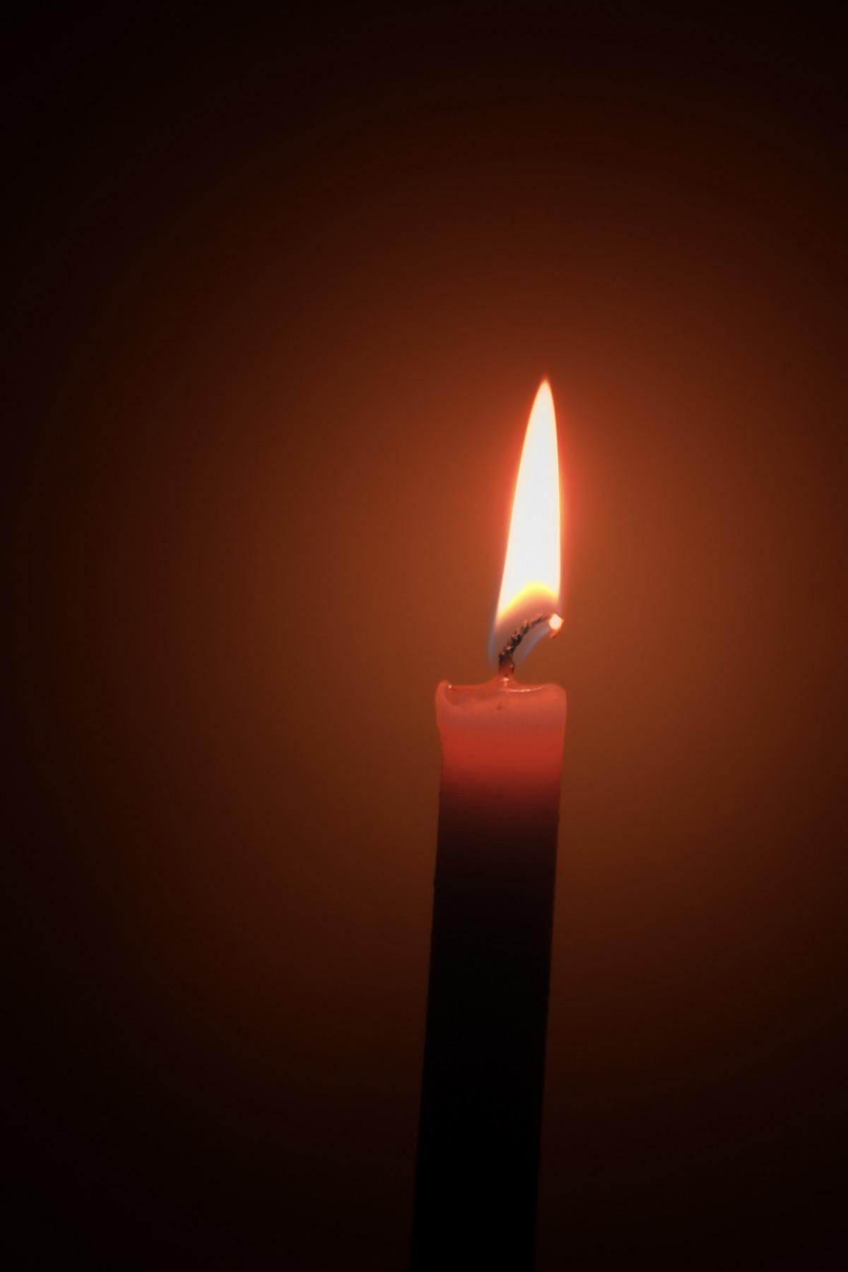 Free Images   Light  Petal  Dark  Shine  Flame  Darkness