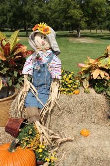 Gambar : jatuh, bunga, patung, kebun binatang, musim gugur ...