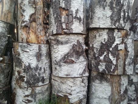 Images Gratuites : arbre, bois, tronc, hache, sculpture ...