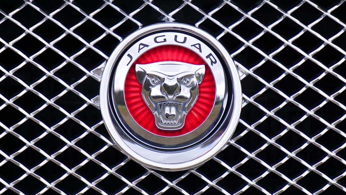 Ягуар Модели Машин С Знаком