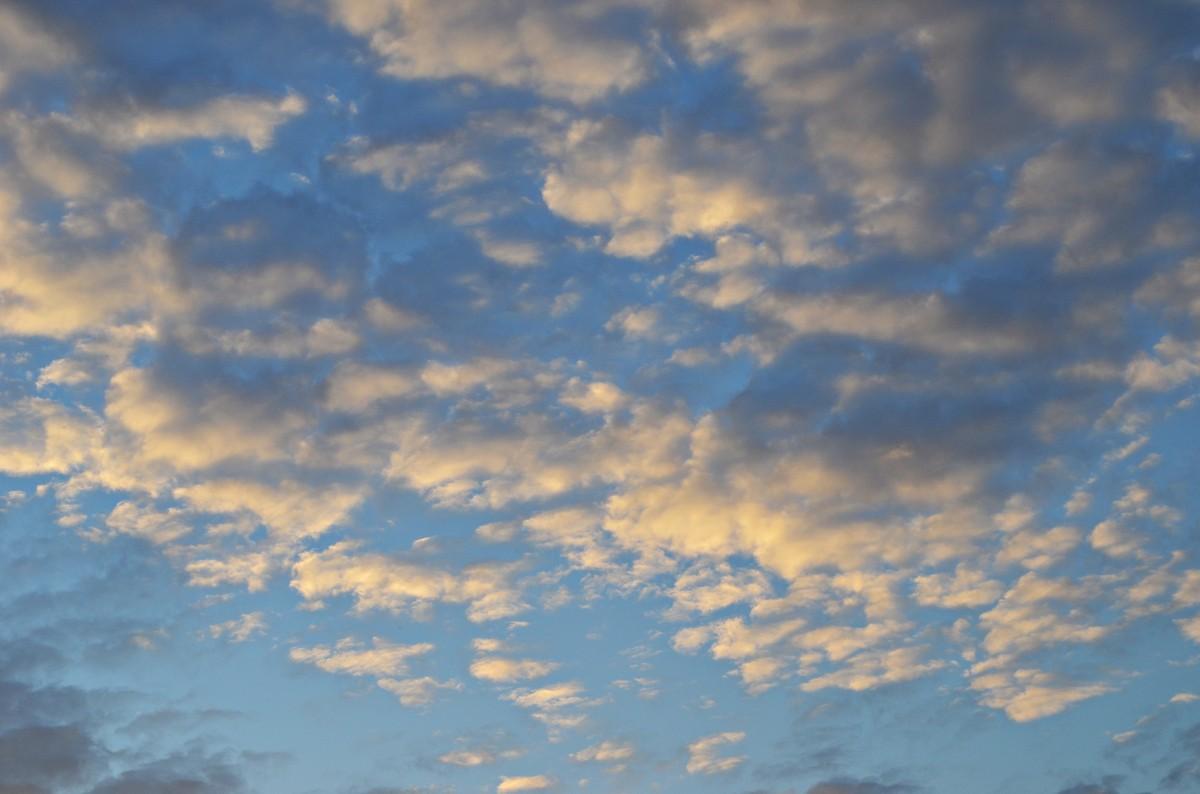 Nature View Sunset