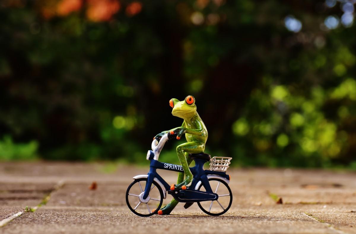 Картинки смешной велосипед, днем рождения