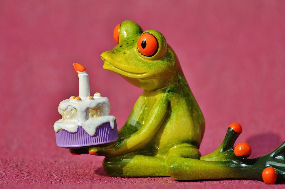 Открытки с днем рождения лягушка, интим прозрачные открытки