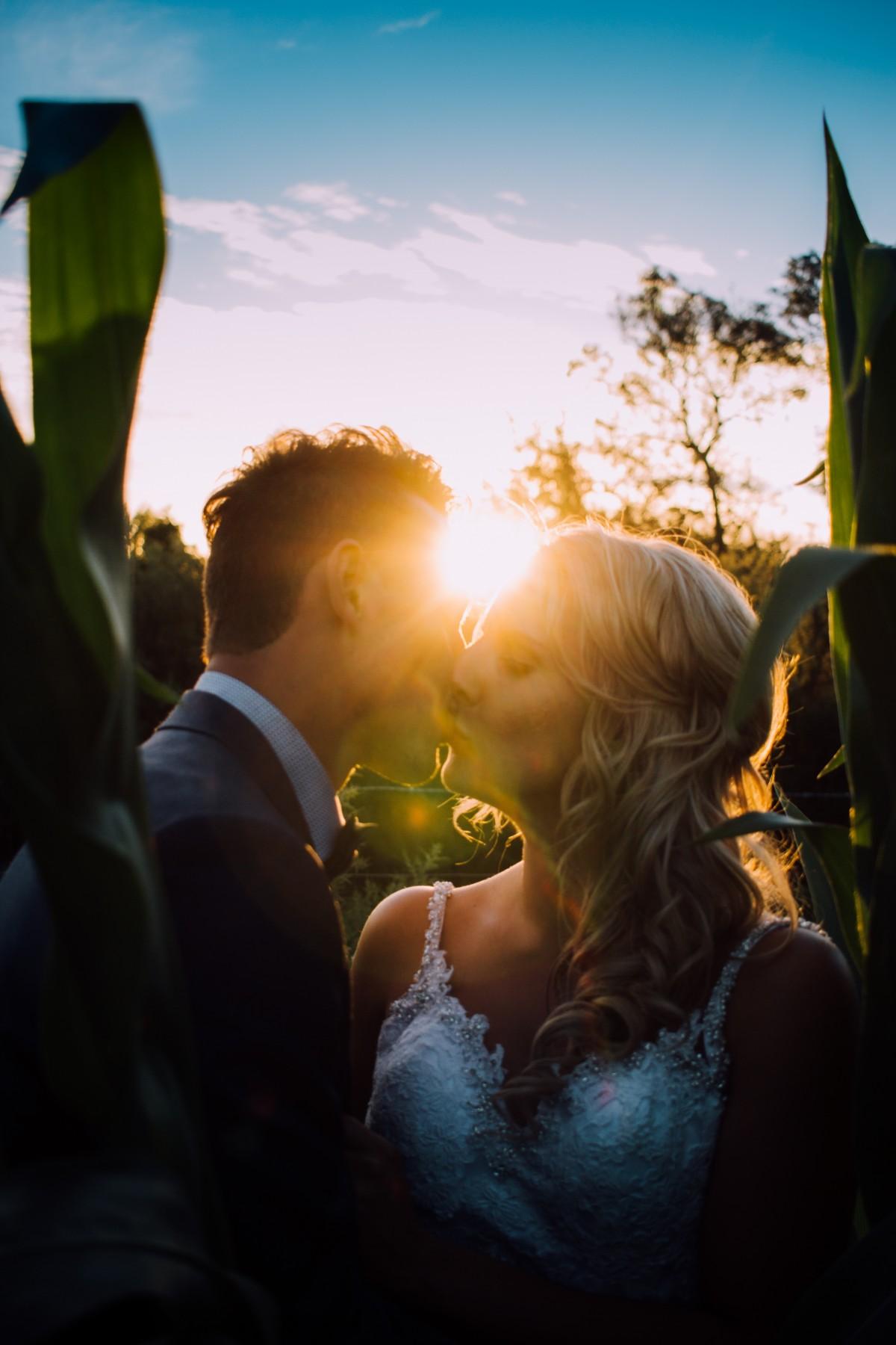 lumière le coucher du soleil lumière du soleil Matin fleur amour Couleur baiser la mariée jeune marié Marrage
