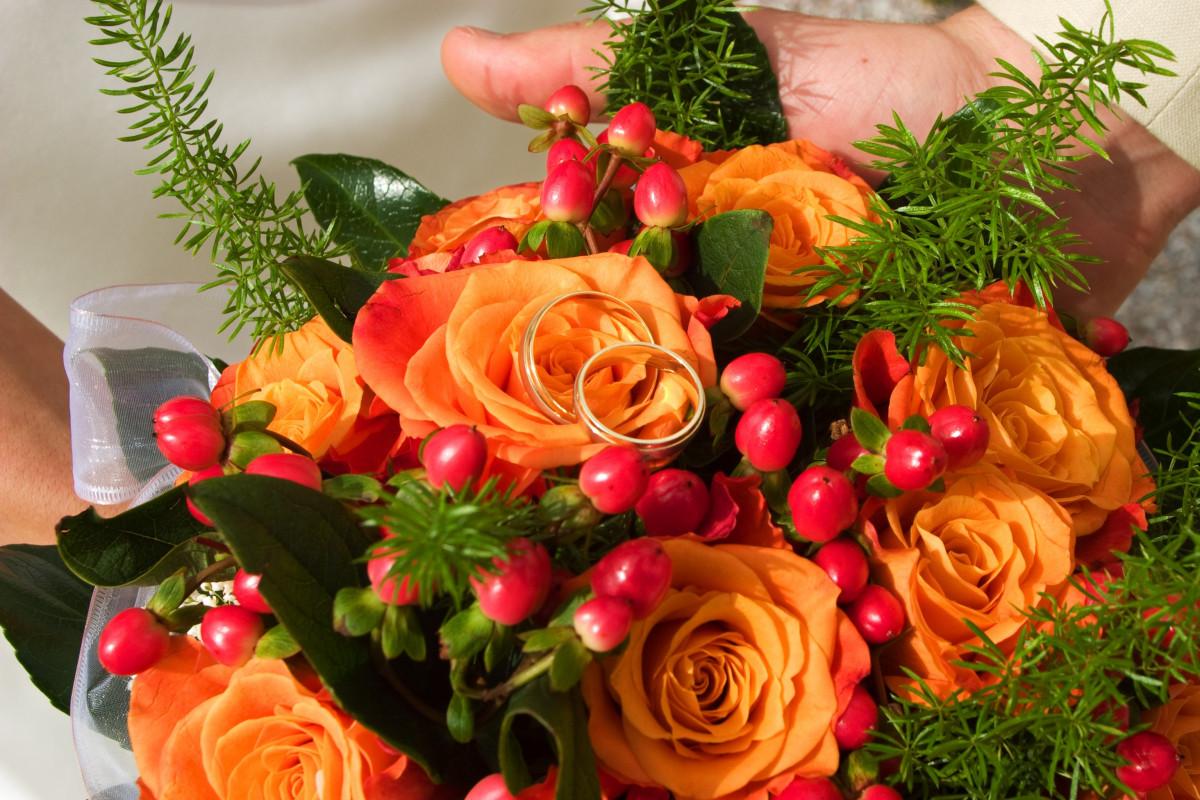 Gratis afbeeldingen fabriek bloem dood roze flora leven bloemen kerst decoratie - Deco fabriek ...