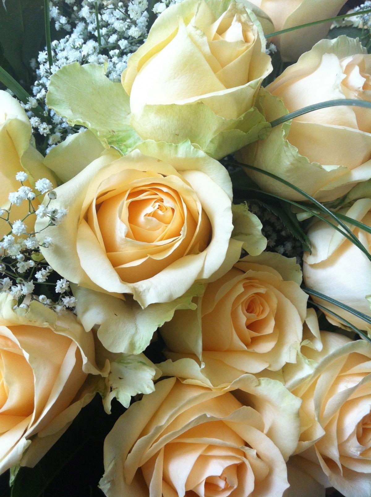 Открытки к дню святого валентина для мужа празднуют