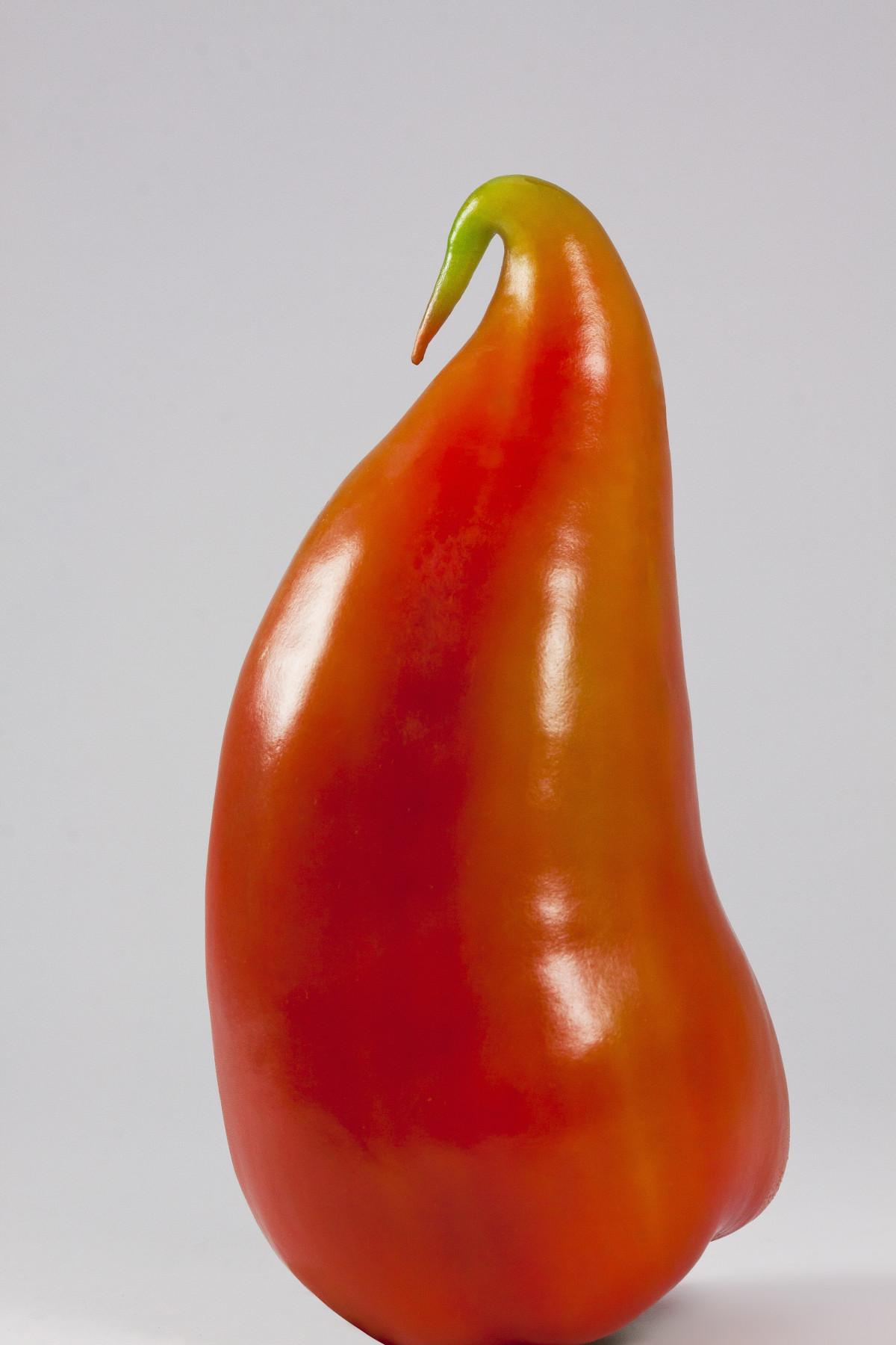무료 이미지 : 과일, 주황색, 식품, 빨간, 생기게 하다, 야채, 부엌 ...